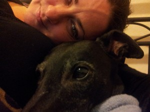 Ju and Ally the greyhound cuddled up together, Ally is very pointy.